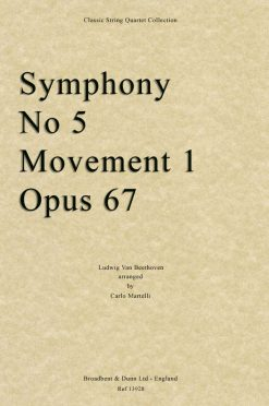 Beethoven - Symphony No. 5 Movement 1