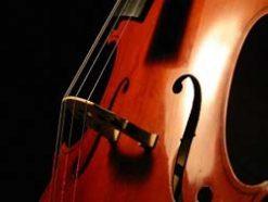 Flute 'Cello & Piano
