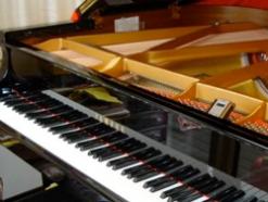 Flute, 'Cello & Piano